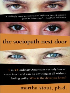 the-sociopath-next-door-book